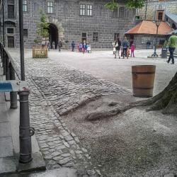 Kamenná dlažba II nádvoří hrad a zámek Český Krumlov